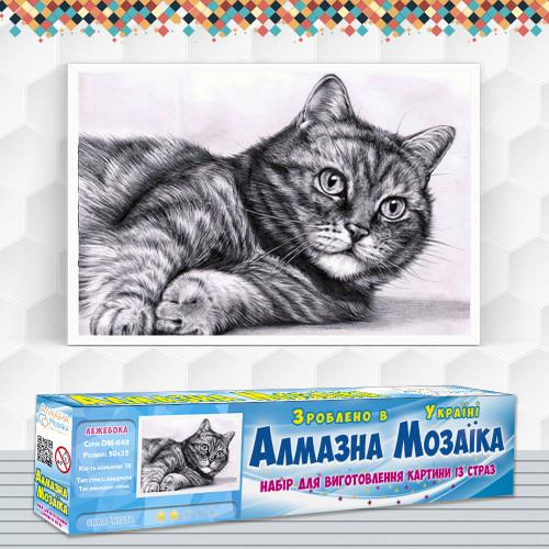 Алмазна вишивка (набір) Кіт - ледар