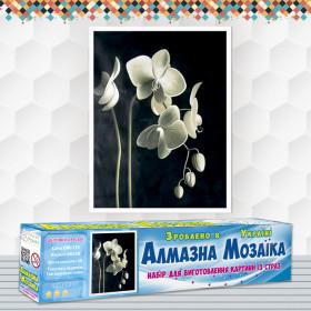 Алмазна вишивка (набір) Квітуча орхідея