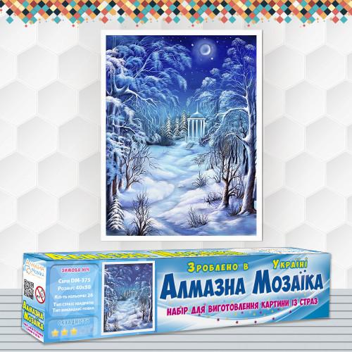 Алмазна вишивка (набір) Зимова ніч